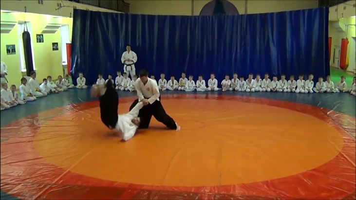 aikido borodulina video preview